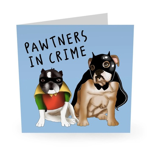 BATMAN ROBIN PAWTNERS IN CRIME