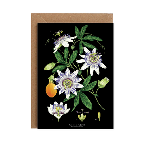 Passion Flower - Black