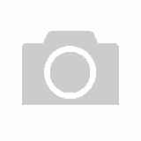 Creatures Of The Order Lepidoptera